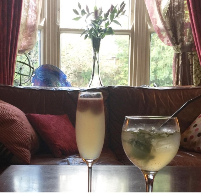 start cocktails